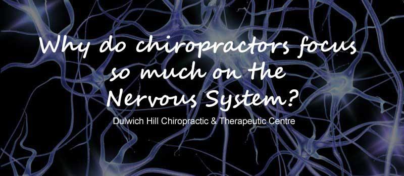 nervuos-system